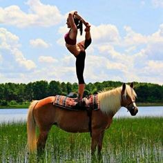 This yogi is killing it!