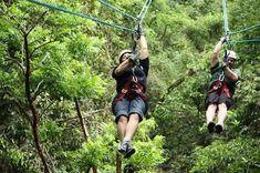Ziplines in Montego Bay