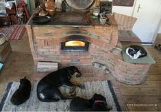 Masonry wood cookstoves are popular with pets as well. The cooktop itself is cas. Masonry wood cookstoves are popular with pets as well. The cooktop itself is cast iron. Rocket Mass Heater, Wood Stove Cooking, Stove Fireplace, Fireplace Ideas, Wood Fired Oven, Stove Oven, Rocket Stoves, Earthship, Cool Pets