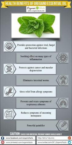 The health benefits of Oregano Essential Oil can be attributed to its properties like anti viral, anti bacterial, anti fungal, anti parasitic, anti oxidant. Oregano Essential Oil, Essential Oil Uses, Doterra Essential Oils, Natural Essential Oils, Young Living Oils, Young Living Essential Oils, Oregano Oil Benefits, Herbs For Anxiety, Herbs For Health
