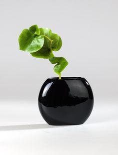 Reduziert und zugleich fancy ist diese #Vase ist #Pearlblack.