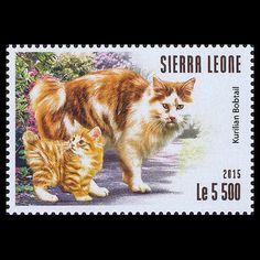 16-1_sierra-leone.jpg (420×420)
