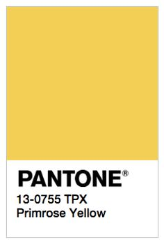Pantone Primrose Yellow -- love this color as primary color in site and logo