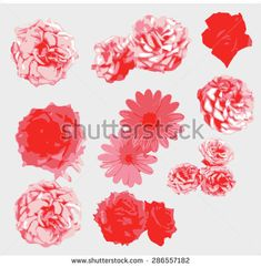 Explore high-quality, royalty-free stock images and photos by available for purchase at Shutterstock. Flower Vector Art, Flat Sketches, Tattoo Graphic, Chinese Landscape, Free Vector Graphics, Chinese Art, Graphic Design, Floral Design, Exotic