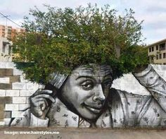 Street Art ~ Tree Cool sungalsses just need$24.99!!! website for you : www.glasses-max.com ~Mixed media!