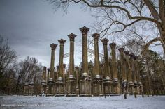 "I enjoyed the photo opportunities during the recent snow. Here is one I capture of Windsor Ruins. I call it ""Windsor Wonderland"". — with Kim Hunt at Windsor Ruins."