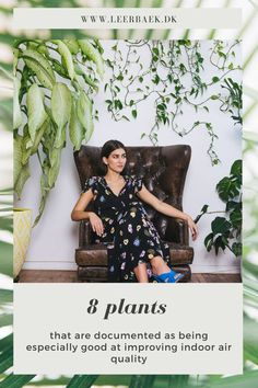 Plants have many properties and one of them is to clean the air in your home, it makes you and your indoor climate healthy. Indoor, Make It Yourself, Dining, Healthy, Plants, How To Make, Dresses, Fashion, Interior