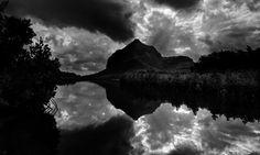 "Photo ""MangrovesatDusk"" by fineartphotography"