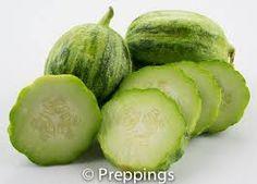 「Mandurian Round Cucumber」の画像検索結果