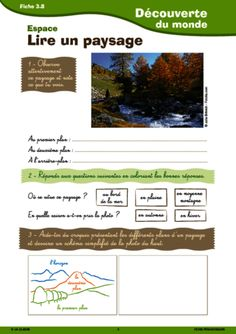 Sciences Cycle 3, High School French, Geography Lessons, Montessori Education, Special Kids, Scientific Method, Teaching French, Continents, Social Studies