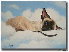 Ориентальная кошка живопись: 22 тыс изображений найдено в Яндекс.Картинках