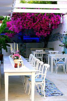 Alaçatı, Turkey Outdoor Restaurant, Cafe Restaurant, Cafe Coton, Alacati Turkey, Wonderful Places, Beautiful Places, Istanbul, Turkey Holidays, Unique Restaurants