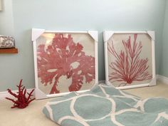Master bedroom colors. Coral, Palladian Blue and gray