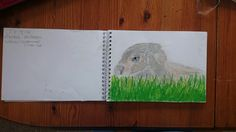 Oil pastel artwork of my rabbit, college summer project 'living creatures'