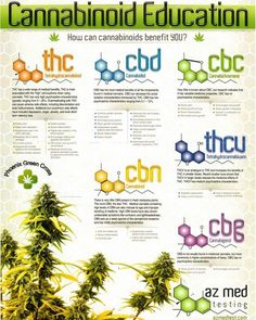 Understanding Cannabis Oil- Conditions that get better with Cannabis Oil