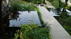 Residential Landscaping, Modern Landscaping, Outdoor Landscaping, Outdoor Gardens, Garden Pool, Water Garden, Garden Landscape Design, Landscape Architecture, Water Features In The Garden
