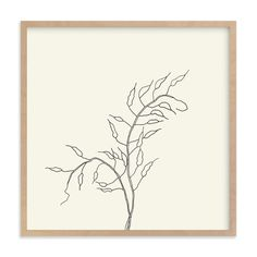 """""""Wild Radish"""" - Art Print by Jorey Hurley in beautiful frame options and a variety of sizes."""
