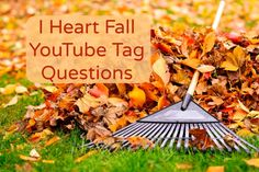 I Heart Fall YouTube Tag Questions