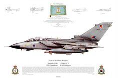 """Tornado GR1, 17(F) Squadron, RAF Brüggen """"Last of the Black Knights"""""""