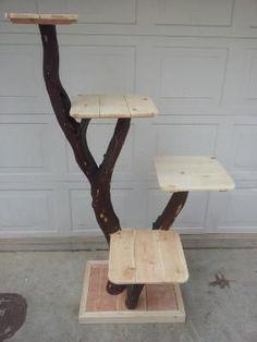 arbre à chat par Okhin