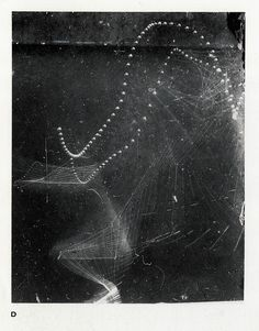 "Étienne-Jules Marey  ""Like his contemporary Eadweard Muybridge, Marey, a physiologist, was interested in the science of human movement. By 1882, he had developed a single camera method that he called chronophotography, which allowed him to make images of human and animal movement. His camera was the forerunner of the motion picture camera.  Marey's chronophotographs were some of the first images to illustrate the exact process of body movement."""