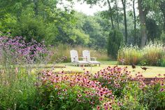 Manor garden with pink flowers and two chairs