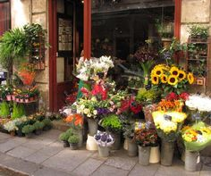Flower shops in Paris.  I could just picture bringing home fresh flowers everyday.