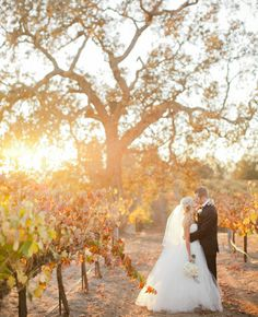 A Black & White California Vineyard Wedding // Photo:  Meagan Ramirez at The Collective Photographers // Feature: TheKnot.com