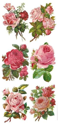 Visit the post for more.You can find Vintage roses and more on our website.Visit the post for more. Decoupage Vintage, Vintage Diy, Vintage Ephemera, Vintage Cards, Vintage Paper, Vintage Postcards, Vintage Images, Victorian Flowers, Vintage Flowers