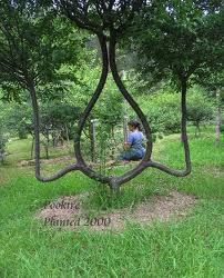 Arbor Sculpting forms a chair for your #garden