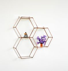 Hanging Glass Terrarium - Wall Geometric Planter - Stained Glass Terrarium - Honeycomb by NojaGlassDesign on Etsy https://www.etsy.com/uk/listing/240432820/hanging-glass-terrarium-wall-geometric