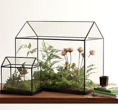 love you big: Terrarium Love