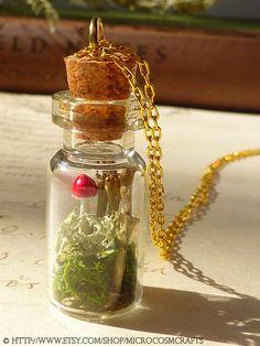 Woodland Naturalist No. 6 - Cladonia Pixie Cup Lichen Terrarium Necklace - Botanical