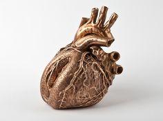 """I Feel It"" – An anatomical heart sculpture with a surprise created by the Czech fine artist Barbora Maštrlová"