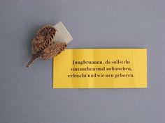 Vier saisonale Postkarten-Sets mit Collagen aus nostalgischen Tiermotiven und Pflanzensujets. Auf hochwertiges, matt-silbernes Papier gedruckt (Offset) mit abgerundeten Ecken. Die Karten können auch einzeln bestellt und individuell zusammengestellt werden. Passend zu den Karten sind matt-silberne Kuverts erhältlich. Produziert werden die Postkarten in der Jobfactory Basel, einem Unternehmen, das Jugendlichen zu besseren Chancen auf dem Lehrstellenmarkt verhilft.