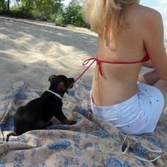#dog #dogs #animals #nature #beach #summer #summertime #lol #funny