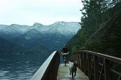 This 66-mile out and back route ties together the Olympic Adventure Route and the Spruce Rail Trail starting at the Elwha River and ending at Lake Crescent on the Olympic Peninsula in Washington. From its high points, you'll catch views of the Olympic Mountains, Vancouver Island and the Straight of Juan De Fuca. Down through …