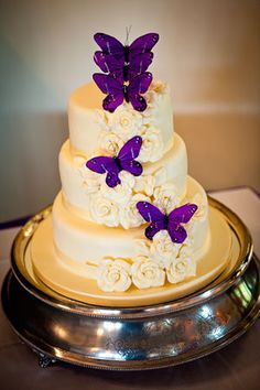 I want this for our wedding cake but the color of the cake would be gray with peach colored flowers & the same purple butterflies :)