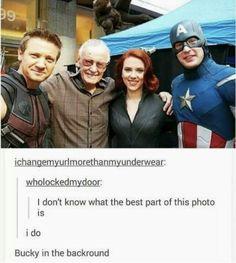 Marvel Jokes, Funny Marvel Memes, Marvel Avengers, Marvel Comics, Funny Memes, Hilarious, Marvel Heroes, Marvel Logo, Marvel Captain America