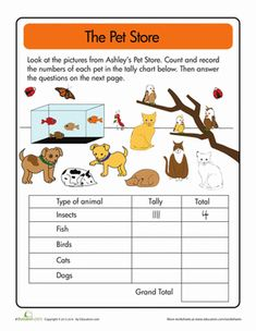 Doing Data: The Pet Store Tally Worksheet