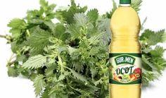 Frappuccino Bottles, Starbucks Frappuccino, Korn, Coffee Bottle, Pesto, Egypt, Remedies, Organic, Drinks