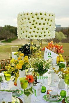 Wedding & Camomile