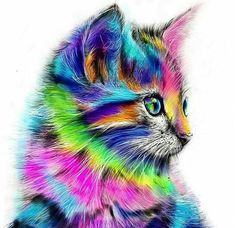Colorful Rainbow Cat DIY Paint by Number Kit Framed/ Unframed Canvas + Paint + Brush Wall Decor Colorful Animals, Colorful Animal Paintings, Cute Animal Drawings, Drawing Animals, Cat Drawing, Drawing Room, Cat Colors, Cross Paintings, Cat Paintings