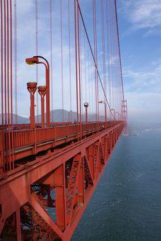 Bridge ~ bydrone_recluse