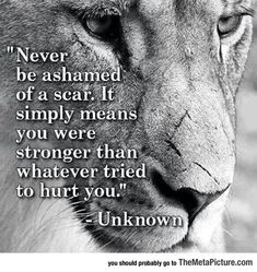 inspirational quotes about dance | inspirational-quote-scar-lion-stronger