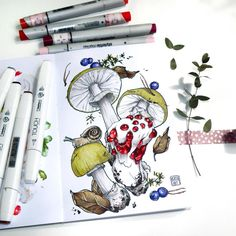 🔹The second task of the botanical marathon is 🍄poisonous mushrooms🍄 --------------------------- 🔹Вторая тема #лесной_марафон - несъедобные…