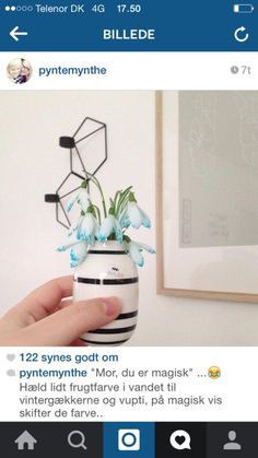 Glass Vase, Creative, Home Decor, Decoration Home, Room Decor, Home Interior Design, Home Decoration, Interior Design