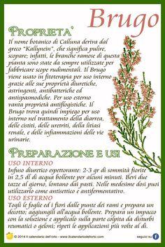 Brugo Natural Life, Natural Health, Wellness Fitness, Medicinal Plants, Vegan Lifestyle, Natural Remedies, Herbalism, The Cure, Healthy Recipes