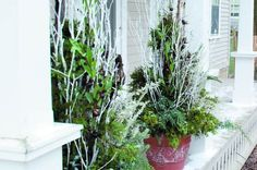 Easy Winter Container Garden Arrangement: Winter doesn't mean your front porch containers have to be empty! Add a few dried stems and berries to create a stunning winter container garden.   Read more: http://www.birdsandblooms.com/backyard-projects/diy-garden-projects/easy-winter-container-garden-arrangement/#ixzz3Lz0lWfBX