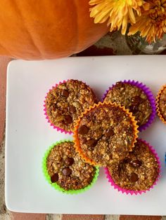 I love a nutritious and delicious muffin; especially if the muffin is high in protein and fiber. This muffin is extremely versatile and due to its high protein content can be used as a healthy snac… Nutritious Snacks, Healthy Snacks, Blueberries Nutrition, Balanced Breakfast, Protein Muffins, Batch Cooking, Dark Chocolate Chips, Blueberry, Banana